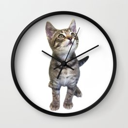 Tabby Kitten Wall Clock
