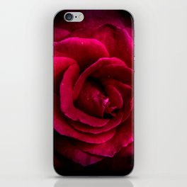Texture Of A Rose iPhone Skin