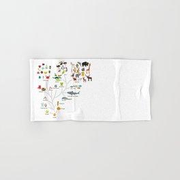 Evolution in biology, scheme evolution of animals on white. children's education back to scool Hand & Bath Towel
