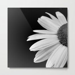 Half Daisy in Black and White Metal Print