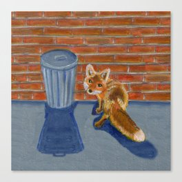 Looking for dinner, urban fox Canvas Print