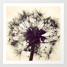 Dandelion Silhouette  Art Print