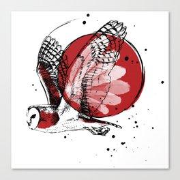 Tyto alba - Barn owl Canvas Print