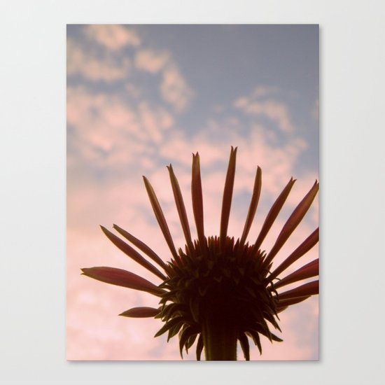 Reach for Your Dreams Canvas Print