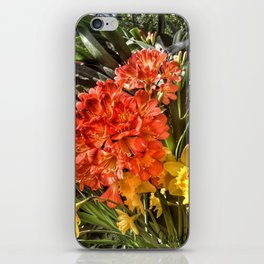 Orange Spring Flowers and Yellow Daffodils iPhone Skin