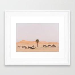 Sahara Camels Framed Art Print