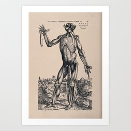 Muscleman, in a landscape, seen from the front. Photolithograph, 1940, after a woodcut, 1543. r Art Print