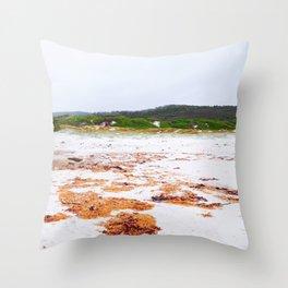 Rusty Banks Throw Pillow