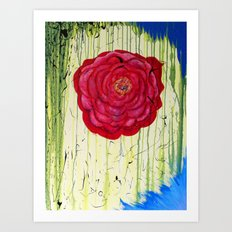 Dripping Dog Rose Art Print