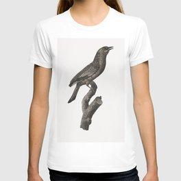 Varied Roller of Maluku island from Histoire Naturelle des Oiseaux de Paradis et Des Rolliers (1806) T-shirt