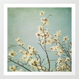 Magnolia tree blossoms photo. Mint Art Print