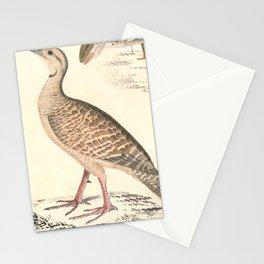 Arborophila orientalis Hardwicke Stationery Cards