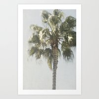 palm tree Art Prints featuring Palm Tree by Pure Nature Photos