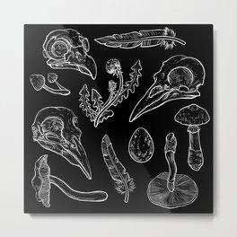 Psilocybe birds Metal Print