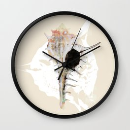 Seashells 2 Wall Clock