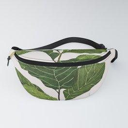 Fiddle leaf fig Tree Fanny Pack