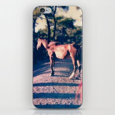 Fugue V iPhone & iPod Skin