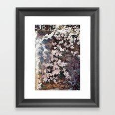Blossom in Pink Framed Art Print