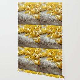 Fresh Italian Pasta Wallpaper