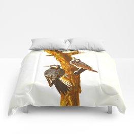 Red-cockaded Woodpecker Comforters
