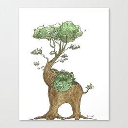 Elephant Tree Trunk Canvas Print