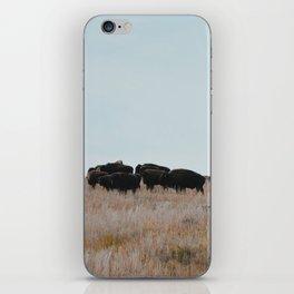 Prairie Bison iPhone Skin