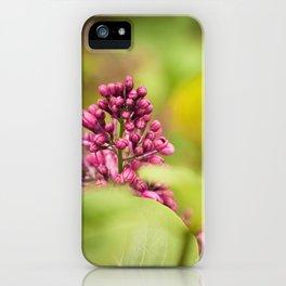 Syringa 2 iPhone Case