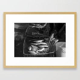 Fisherman hands Framed Art Print