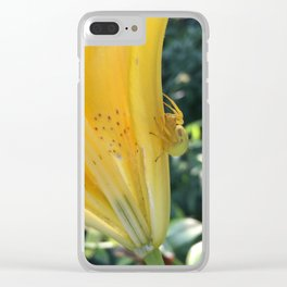 Spider Hides in Plain Sight Clear iPhone Case
