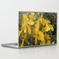marc johns Laptop & iPad Skins featuring Beautiful St Johns Wort by Wendy Townrow