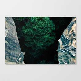 The Forest Below Canvas Print