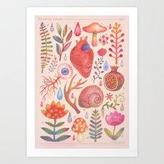 Et coloris natura X Art Print