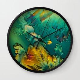 Micrograph 1 Wall Clock