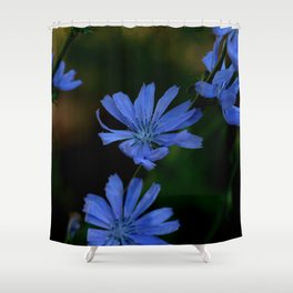 Eyes as blue as chicory blooms Shower Curtain