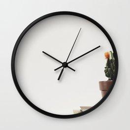 Close up of a small cactus Wall Clock