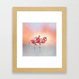 Two Pink flamingos in the water at sunset Framed Art Print