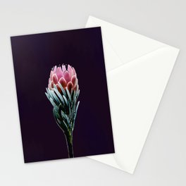 Beauty in Bloom Stationery Cards