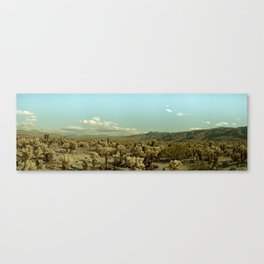 Joshua Tree Cactus / Desert Succulents Canvas Print