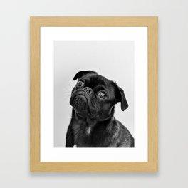 Pug Love II Framed Art Print