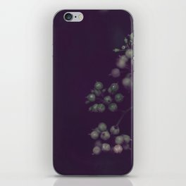 Sage Green Seeds on Deep Plum iPhone Skin