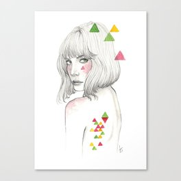 Color geometry Canvas Print