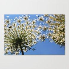 white green blue Canvas Print