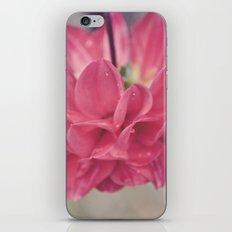 Water Petals iPhone & iPod Skin