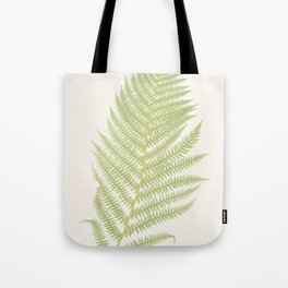 Ferns #2 Tote Bag