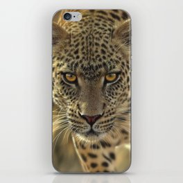 Leopard - On the Prowl iPhone Skin