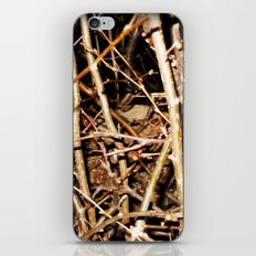 Nested In Thorns iPhone & iPod Skin
