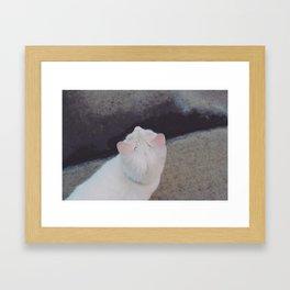 A Cat Framed Art Print