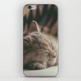 Sweet lullaby. Cat nap. iPhone Skin