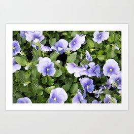 Longwood Gardens Orchid Extravaganza 55 Art Print