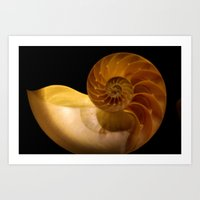 shell Art Prints featuring shell by littlesilversparks